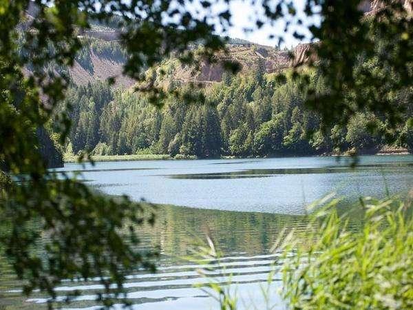 Lago Lases