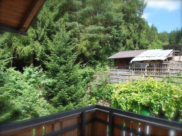 camera matrimoniale vista bosco