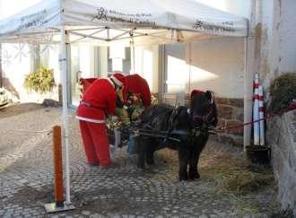 El Paés dei Presepi: il calessino natalizio - I2