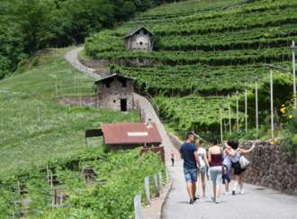 Baiti en festa - Food and wine route into the rural hut - I2
