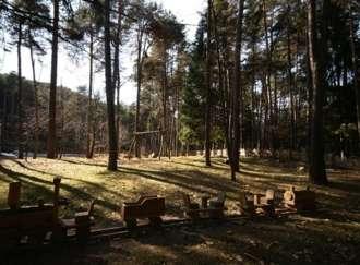 Passaggio a nord-est: mafie in Triveneto e in Trentino - I2