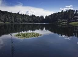 Natura, storie e leggende al Lago Santo - E2