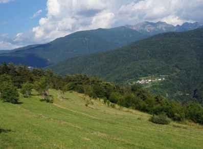 Prati e pascoli di montagna: COME E PERCHÉ TUTELARLI? - EH3