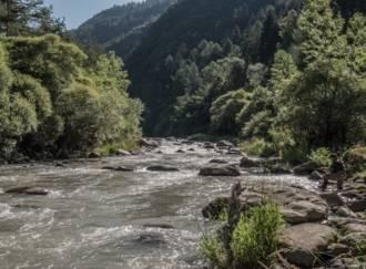 Pesca sul torrente Avisio - G4