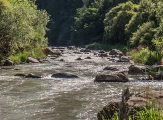 Pesca sul torrente Avisio - G6