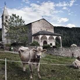 Chiesa di Santo Stefano a Fornace - FI
